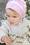 вал девушки вишни цветения Стоковые Фото