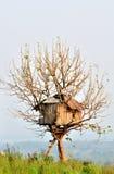 вал дома Стоковая Фотография RF
