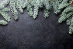 вал ели рождества предпосылки Стоковое Изображение