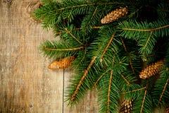 Вал ели рождества с pinecones Стоковые Изображения RF