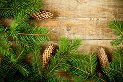 Вал ели рождества с pinecones Стоковые Фотографии RF