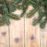 Вал ели рождества Стоковые Фото