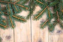 Вал ели рождества Стоковое Изображение RF