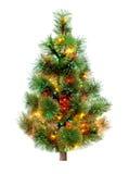 Вал ели рождества Стоковые Изображения RF