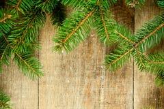 Вал ели рождества Стоковая Фотография