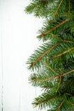 Вал ели рождества Стоковая Фотография RF