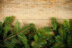 Вал ели рождества Стоковые Изображения