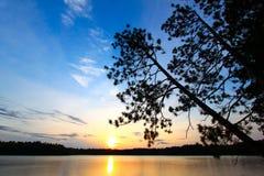 вал захода солнца силуэта сосенки Стоковое Фото