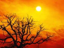 вал захода солнца Стоковые Изображения