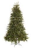 вал зеленого цвета ели украшения рождества Стоковое Изображение RF