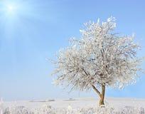 Вал зимы стоковое изображение rf