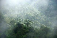 Вал и гора крышки тумана утра Стоковое фото RF