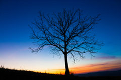 Вал и небо Стоковое Изображение RF