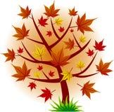 вал клена листьев падения осени Стоковое фото RF