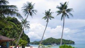 вал кокоса пляжа Стоковое фото RF