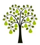 вал красного цвета груш груши зеленого цвета листва предпосылки бесплатная иллюстрация