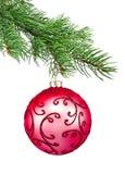 вал красного цвета орнамента ели рождества шарика Стоковые Фотографии RF