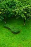 вал лужайки Стоковое фото RF