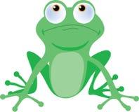 вал лягушки Стоковое Изображение RF