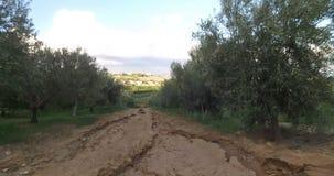 вал места молярной ночи el madrid прованский сток-видео