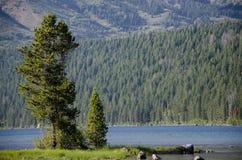 Вал на озере стоковые изображения