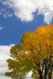 вал неба осени Стоковое фото RF