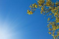 вал неба сени солнечный Стоковое Фото