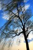 вал неба стоковое изображение rf