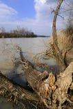 вал озера стоковые изображения rf