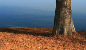 вал озера Стоковое Изображение
