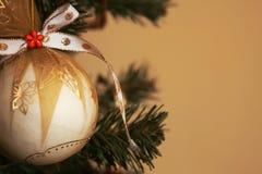 вал орнамента рождества Стоковое Изображение RF