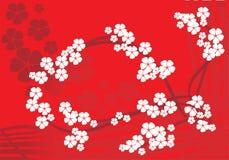 вал орнамента цветения яблока Стоковые Изображения RF