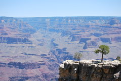 вал передовой линия каньона грандиозный Стоковые Фотографии RF