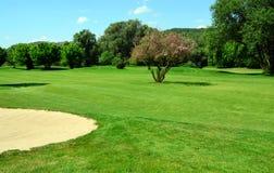 вал песка ямы гольфа курса цветя зеленый стоковое изображение