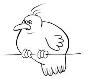 вал птицы Стоковые Фото