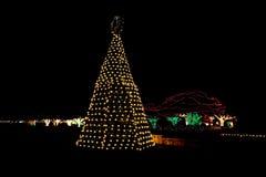 вал светов рождества напольный стоковое изображение rf