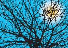 вал силуэта ветвей Стоковое Фото