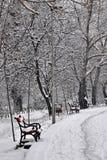 вал снежка стенда Стоковая Фотография RF