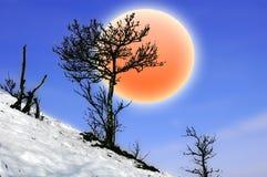 вал солнца Стоковые Изображения