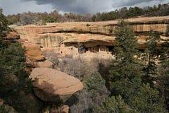 вал спруса дома каньона стоковые изображения rf