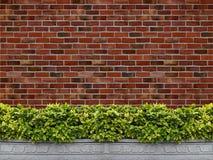 Вал с предпосылкой кирпичной стены Стоковые Изображения RF