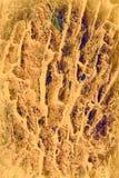 вал текстуры Стоковое Изображение RF