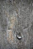вал текстуры Стоковая Фотография RF
