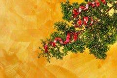 вал тесемки украшения рождества ветви красный Стоковое Изображение