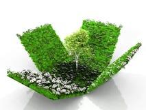 вал травы коробки иллюстрация штока