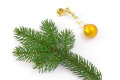 вал украшения рождества ветви Стоковое Изображение RF