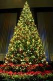 вал украшения рождества Стоковые Изображения RF