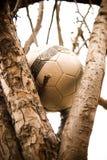вал футбола шарика сиротливый вверх стоковые фотографии rf