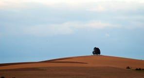 вал холма Стоковая Фотография