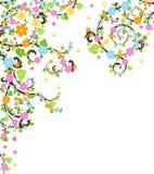 вал цветения Стоковые Изображения RF